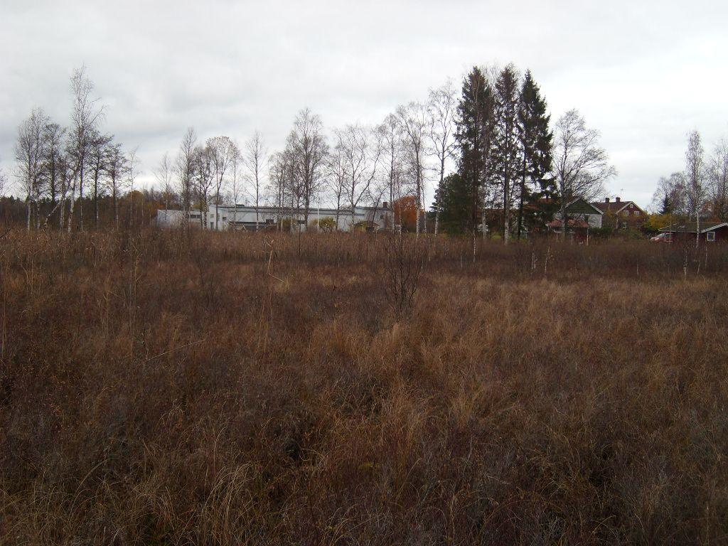 2014-10-19_Fors_Kanalen 027_1200